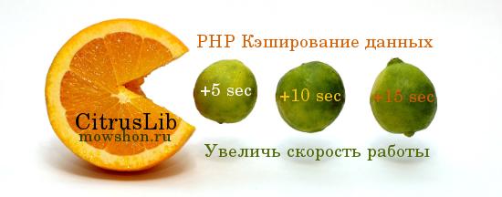 Кэширование данных в PHP с помощью CitrusLib