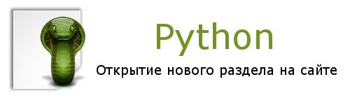 Открываю раздел о Python